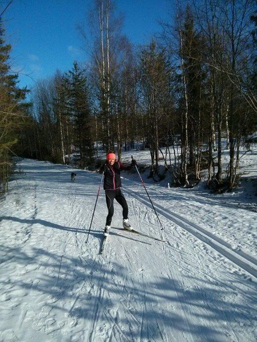 skidorr